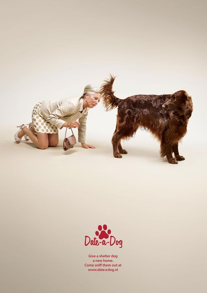 Dog Adoption Ads