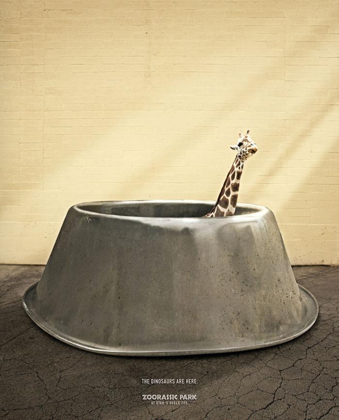 Hogle动物园