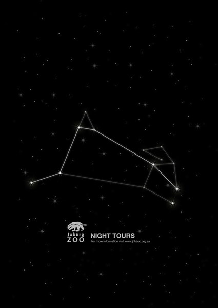 约翰内斯堡夜间动物园