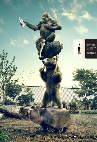 国家动物园平面广告