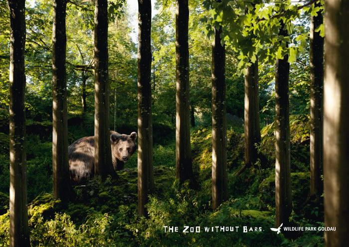 景观与动物公园