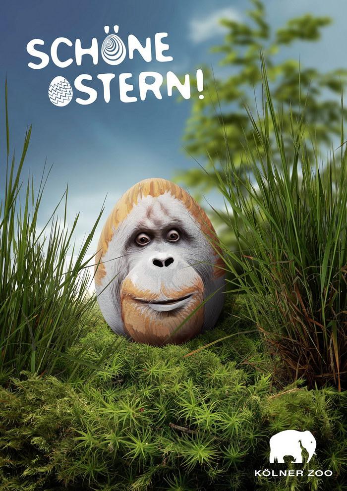 科隆动物园平面广告